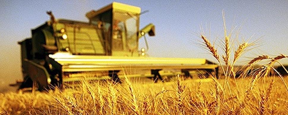 Covid-19 non fermi imprese agricole della Campania
