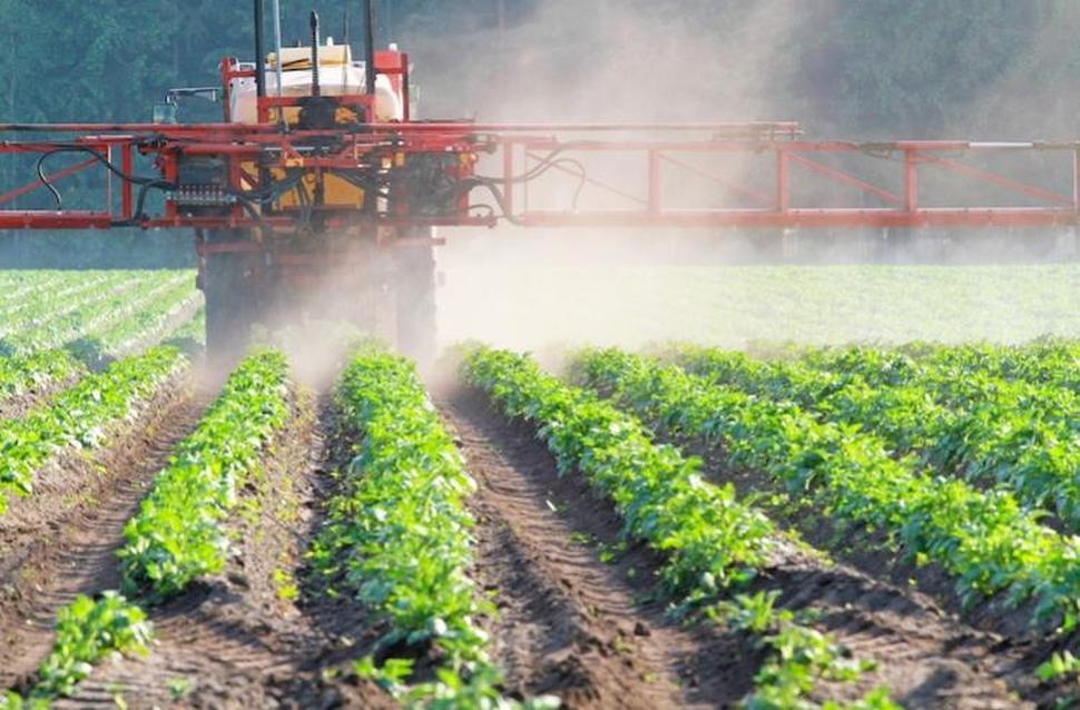 Piano economico sociale della Regione Campania, 79 milioni per l'agricoltura